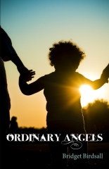 Ordinary Angels - Great book about recovering from loss and family tragedy